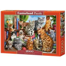 Corti: House of Cats, 2000 pieces